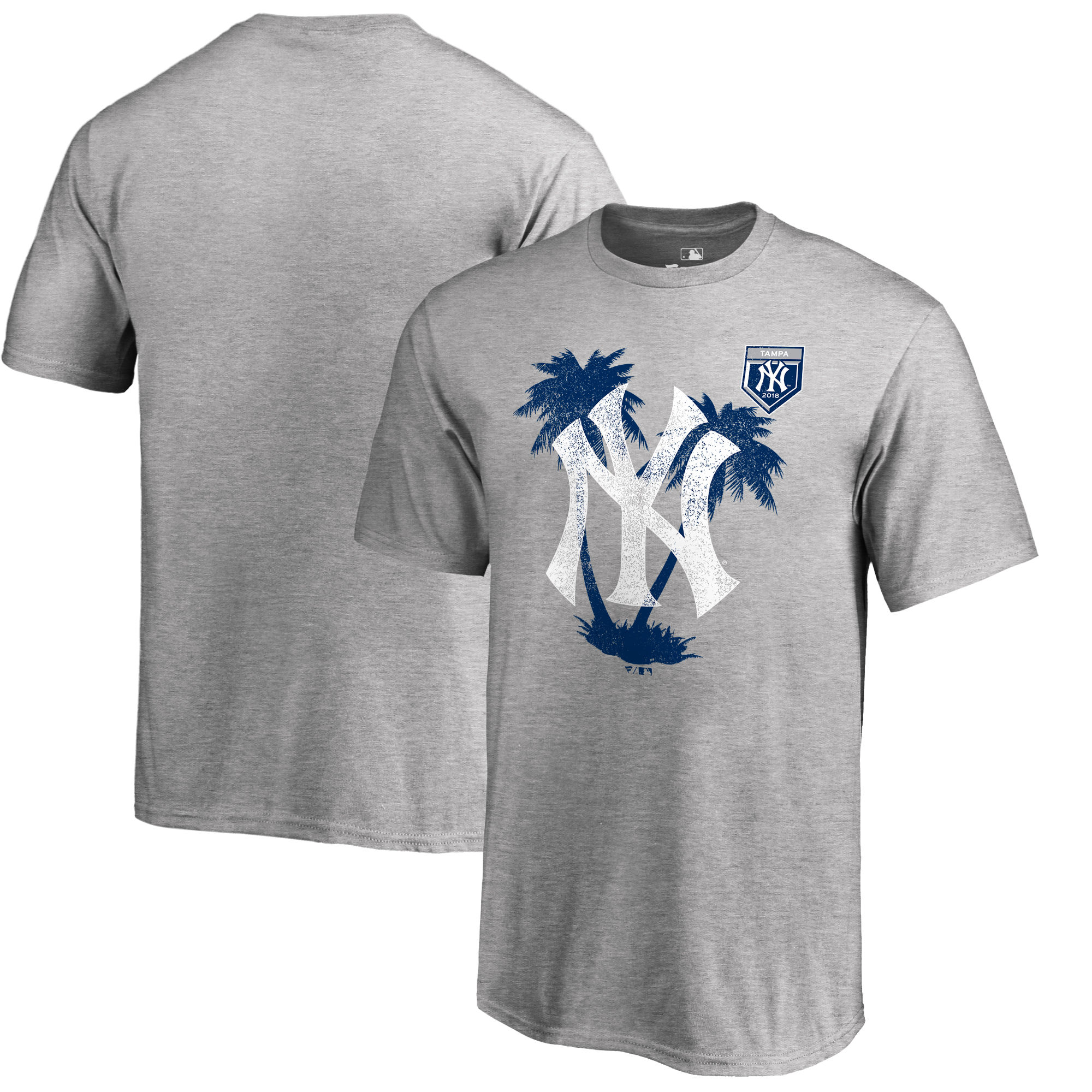 Men's New York Yankees Fanatics Branded 2018 MLB Spring Training Vintage T-Shirt – Heather Gray