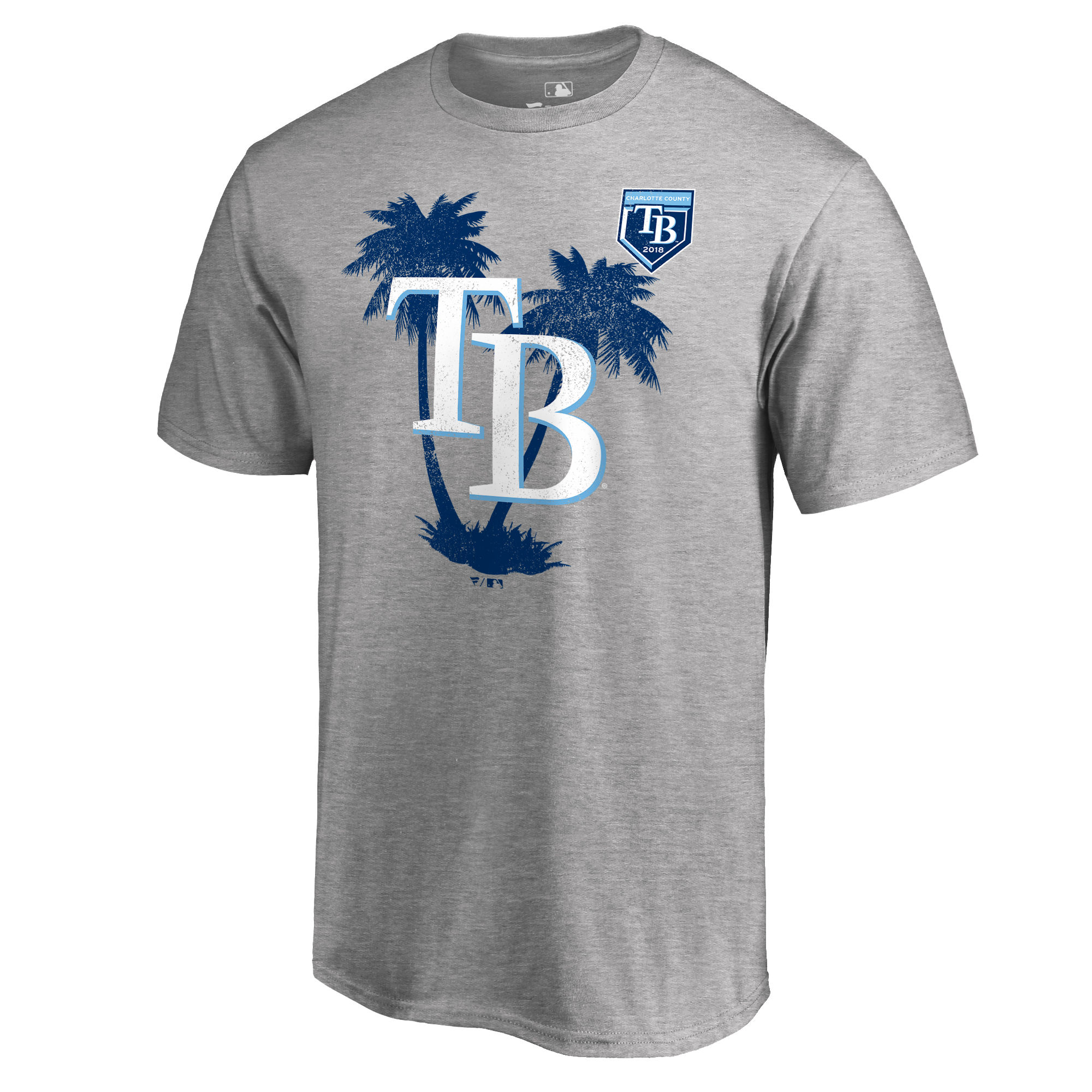 Men's Tampa Bay Rays Fanatics Branded 2018 MLB Spring Training Vintage T-Shirt – Heather Gray