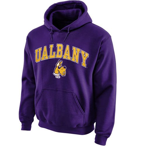 Albany Great Danes Midsize Arch Pullover Hoodie Purple